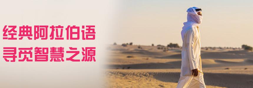 杭州阿拉伯语培训班