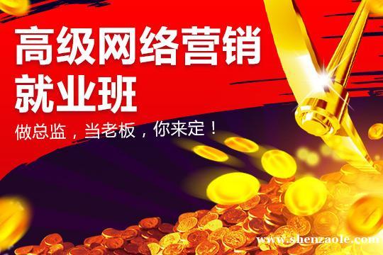 上海高级网络营销就业班(直营分校6所,就近入学)