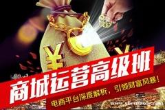 上海商城运营高级班(直营分校6所,就近入学)