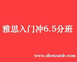 杭州雅思入门冲6.5分班