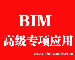 上海BIM高级专项应用培训