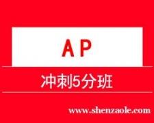 上海AP 冲刺5分班