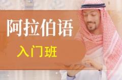 杭州阿拉伯语入门班