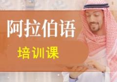 上海阿拉伯语培训课程