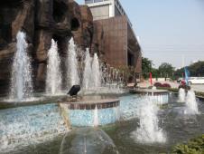 2021年广州白云工商技师学院5年制大专招生简章
